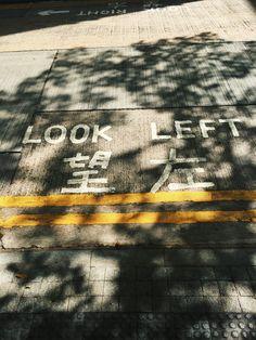 望左. #lookleft #treeshadowporn