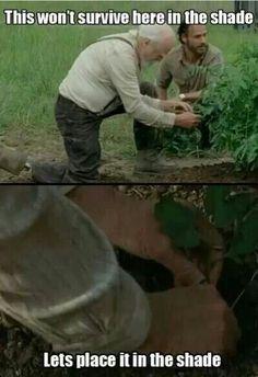 Walking Dead zombie Rick Grimes Herschel