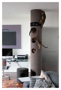 Another Must-Have Cat Scratcher: The Hicat Climbing System - Katzen - Cats Cat Climber, Cat Shelves, Cat Playground, Playground Design, Cat Scratcher, Cat Room, Cat Condo, Pet Furniture, Modern Cat Furniture