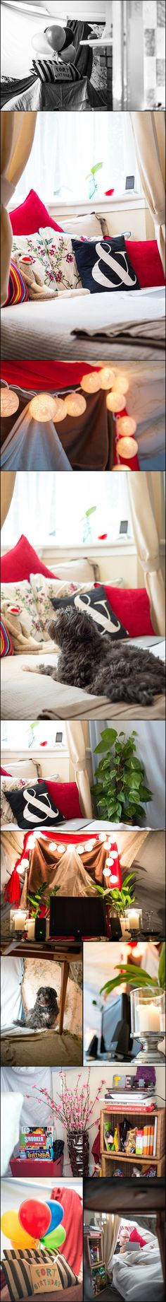 How to build a blanket fort for two very silly grown-ups (and one puppy dog)!