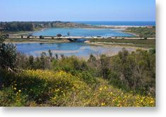 Batiquitos Lagoon in Carlsbad, CA. It's a great bike ride from Carlsbad to Oceanside along the lagoon.