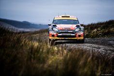 Rally Car, Ford Focus, Cars, Vehicles, Sports, Fiestas, Hs Sports, Autos, Car