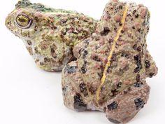 Kreatif! Katak, Jantung Sampai Fosil Ini Terbuat Dari Cokelat Lho http://www.perutgendut.com/read/kreatif-katak-jantung-sampai-fosil-ini-terbuat-dari-cokelat-lho/4124 #Food #Kuliner