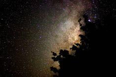 Un nopal tapando la via láctea hahaha #astronomy #astrophotography #astronomia #astrofotografia #vialactea #milkyway #sky #skyporn #noche #nigth