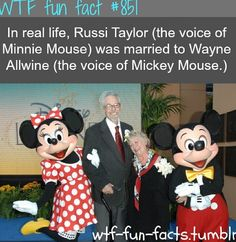 The voice behind Mickey Mouse and Minnie Mouse are couple in real life. Wayne Allwine is the voice behind Mickey Mouse and her wife Russi Taylor in Minnie Mouse. Wayne Allwine the actor who voiced… Mickey Mouse, Mimi Y Mickey, Disney Movie Trivia, Disney Fun Facts, Walt Disney, Disney Love, Punk Disney, Disney Stuff, Disney Dream