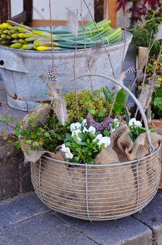 burlap lined basket. great idea instead of coco liners Easter Flower Arrangements, Easter Flowers, Flower Vases, Eco Garden, Garden Art, Spring Plants, Spring Garden, Container Plants, Container Gardening