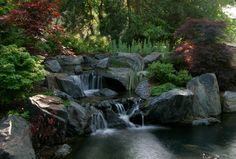 Natural Swim Pools Adding Clarity And Beauty Into Your Backyard Traditional Pool Chicago Kane Brothers Water Features
