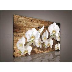 Obraz na stenu biela orchidea na dreve 75 x 100 cm Angles, Stencil, Painting, Art, Flowers, Art Background, Stenciled Table, Painting Art, Kunst