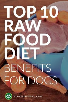 Touted by many as the 'miracle' diet for dogs, especially for those with a lot of ailments, the raw dog food diet works because it is the most 'normal' diet for our four-legged woofies.