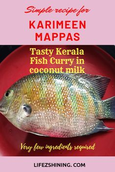 Tasty Kerala Karimeen Mappas with Green chromide state fish of Kerala very easy recipe with minimum ingredients seer fish and white pomfret equally good