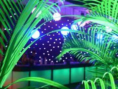 Google+^ Laurent Vasseur  soholeds   tendências que ficam , deseja a todos sucesso nas Festas de Fim de Ano 2014 !!! Afinal festejar conquistas é preciso !!!!  #soholeds   #locação  #barled #eventos   #festas   #formatura   #15anos  #festasdefimdeano