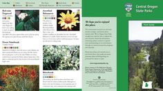 Central Oregon state parks plant guide, by the Oregon State Parks and Recreation Department