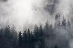 https://flic.kr/p/vvKoMz | Parc National de la Vanoise - 2015