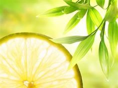 Several studies have found that lemon balm combined with other calming herbs (such as valerian, hops, and chamomile) helps reduce anxiety and promote sleep. In a recent double-blind, placebo-controlled study, 18 healthy volunteers received two separate single doses of a standardized lemon balm extract (300 mg and 600 mg) or placebo for 7 days. The 600 mg dose of lemon balm increased mood and significantly increased calmness and alertness.