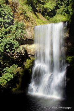 Silver Falls State Park - Silverton, Oregon