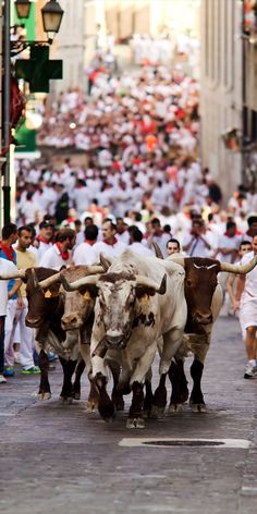 Running of the Bulls—Pamplona, Spain | TOP 10 World Legendary Festivals You Don't Want To Miss