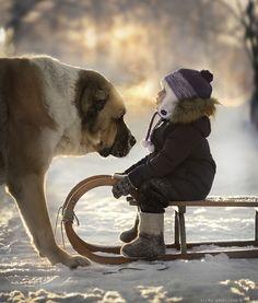 Mãe russa tira incríveis fotos de animais com seus filhos (16)