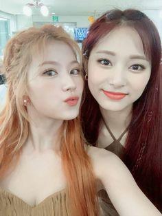 Nayeon, Kpop Girl Groups, Korean Girl Groups, Kpop Girls, Happy Birthday In Chinese, Tzuyu And Sana, Twice Tzuyu, Twice Group, Twice Once