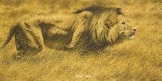 BEWARE THE ENFORCER -Brian Jarvi Art Big Five Series of African Wildlife Artist Brian Jarvi - the Big Five SeriesBrian Jarvi