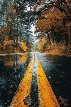 Wallpaper | Autmn | Road | Orange | Brown Earth, Country Roads, Harley Davidson, Biker, Mother Goddess, World, The World