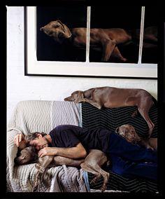 """O fotógrafo norte-americano William Wegman, acompanhado de seus cães, em registro de Abe Frajndlich. Imagem constante do livro """"Penelope's Hungry Eyes - Portraits of Photographers""""."""