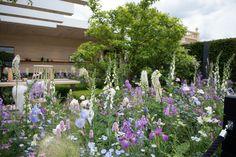 LG Smart Garden RHS Chelsea Flower Show 2016
