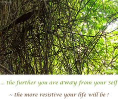... the further you are away from your Self ~ the more resistive your #life will be !