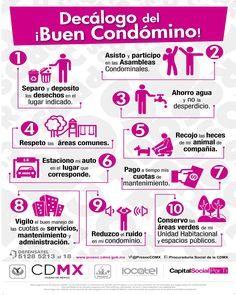 Inmobiliaria Ideas, Capital Social, Hashtags, Plaza, Bolivia, Gardens, Birds, Twitter, Google