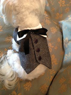Elegant Dog Vest by YvettesLittleShop on Etsy, $42.00