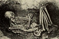 Nephilim Chronicles: Giant Human Skeletons: Ohio Museum Curator Discovers 8 Foot Human in Burial Mound