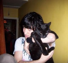 Noel Fielding... and a  cat.