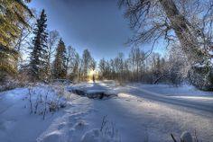 Frozen Sunburst