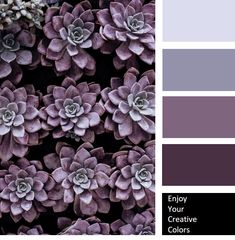 Wonderful Photographs Color Palette aesthetic Tips Regardless of whether you are a inexperienced and also an oldtime palm, understanding colour is esse Purple Paint Colors, Purple Color Palettes, Lavender Color Scheme, Purple Palette, Bedroom Colour Palette, Create Color Palette, Color Lila, Dmc, Aesthetic Colors