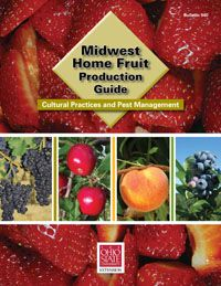 Midwest Home Fruit Production Guide