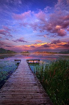 Scenery ~~And Silence, morning at the lake, a view from the pier, by Phil Koch~ Beautiful Sunset, Beautiful World, Beautiful Images, Pretty Pictures, Cool Photos, Amazing Nature, Beautiful Landscapes, Beautiful Landscape Photography, Nature Photography