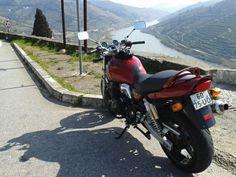 Suzuki no Douro.