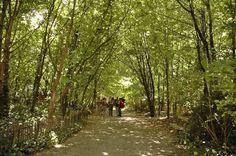Photo de Le Jardin Naturel - Paris, France