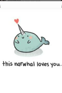narwhal loves you