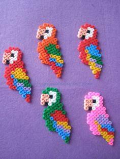 perroquets en perles hama (choix de plusieurs couleurs)