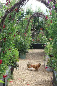 emma-bridgewater-arthur-parkinson-garden-chickens-arbors-grael-paths-raised-beds-gardenista