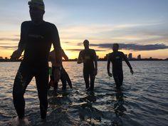 Sunset Open Water Swimming, Sunset, Sunsets, The Sunset