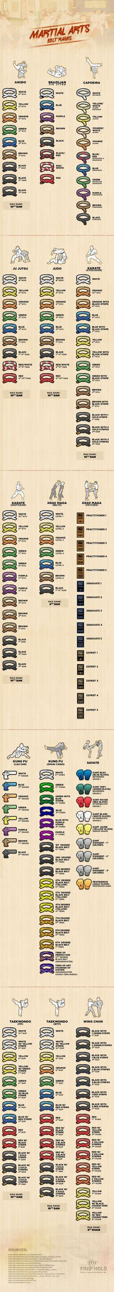 15 Martial Arts Belt Ranks Infographic | MMA Verse. Hm not sure about some of these.: