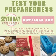 7 Day Challenge -  Mock emergencies with daily limitations, tasks and report cards to see how you would do in an emergency - free download.