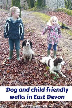 Andrewshayes Holiday Park has some Perfect Beautiful Relaxing East Devon Dog Pet Friendly WALKS for you all to go on. Enjoy the stunning Devon Countryside. Dog Friendly Holidays, South West Coast Path, Lyme Regis, Dog Walking, Dog Friends, Devon, Walks, Pet Dogs, Countryside