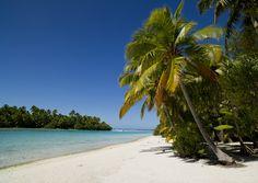5ca6672267c 53 best  Beach Bounty images on Pinterest