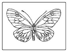 girl you got one of them black fuzzy caterpillars on your face ... - Hungry Caterpillar Coloring Pages