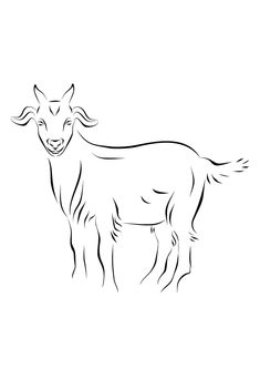 Top 25 Free Printable Goat Coloring Pages Online goat