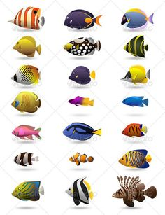 Buy 21 Colorful Tropical Fishes by henryhu on GraphicRiver. Description 21 Colorful vector tropical fishes You will Get 1 AI file 1 EPS file 21 transparent PNG images for each f. Marine Aquarium, Marine Fish, Saltwater Aquarium, Aquarium Fish, Saltwater Fish Tanks, Tropical Fish Tanks, Freshwater Aquarium, Fish Chart, Underwater Painting