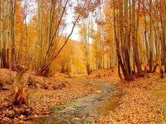 Afganistan as you don't see it: fotos Bilal Sarwary