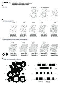 Circle Pack Process_Diverse